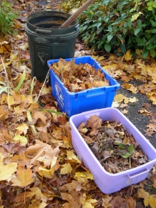 "materials for sheet composting: ""greens and browns"""
