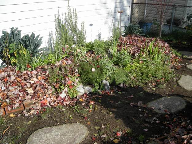 mulched herb bed