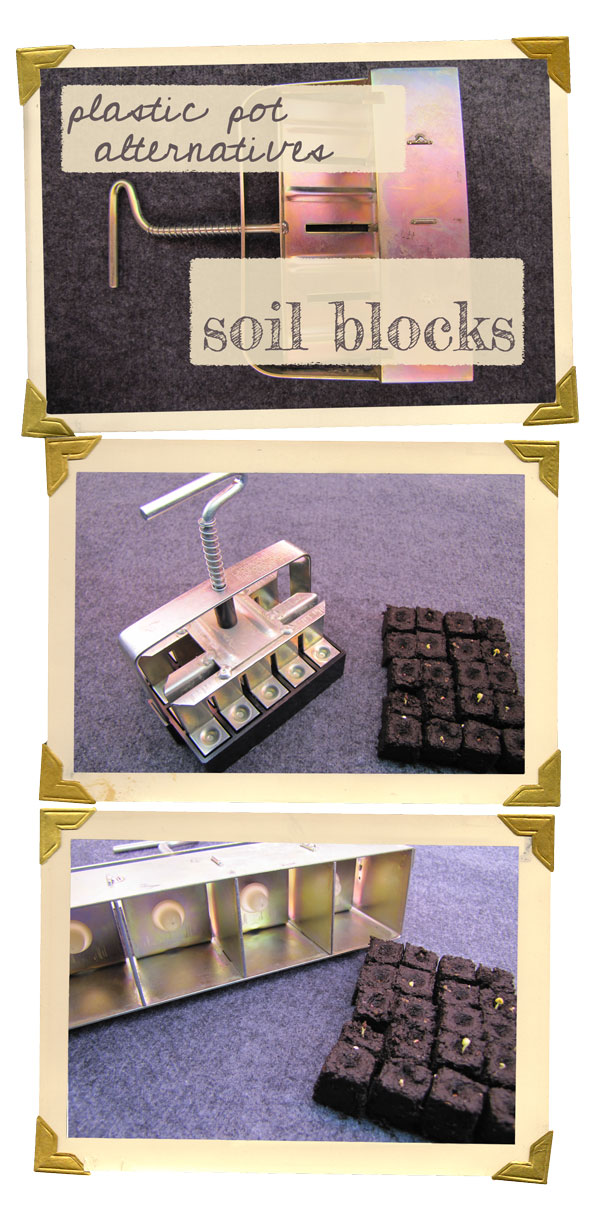 soil block seed starting garden tool