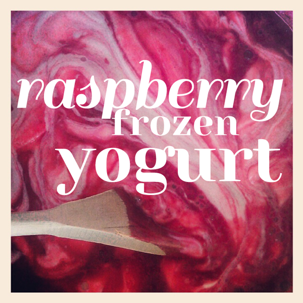 raspberry frozen yogurt recipe