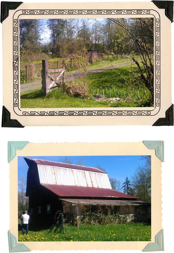 farmhouse garden and barn