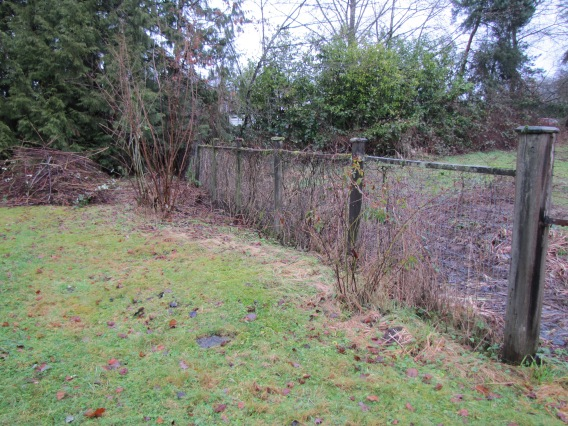 farm fence clear of brush