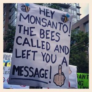 monsanto kills bees