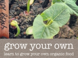 grow-your-own-category-detail