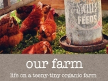 our-farm-category-pic